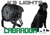 K9 Labrador - LED - OUTDOOR